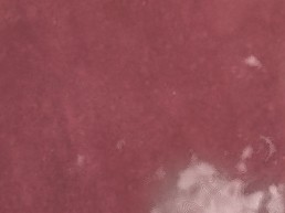 Artisan / Burgundy