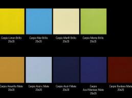 Carpio / 20x20 / Colours 2