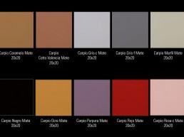 Carpio / 20x20 / Colours 3